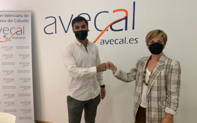 Avecal incorpora un servicio de showroom virtual para sus asociados